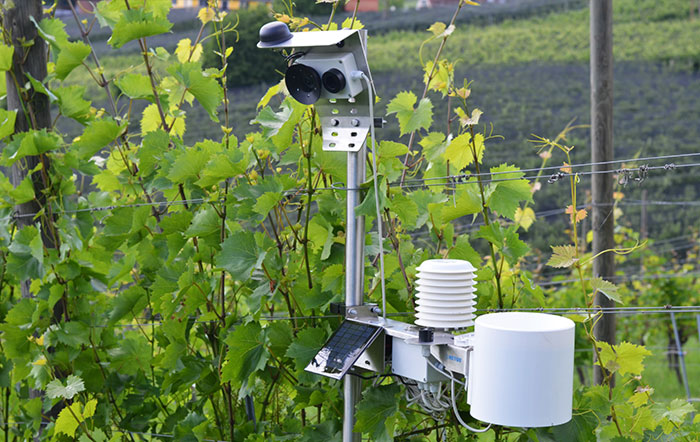 REMOTE FIELD MONITORING