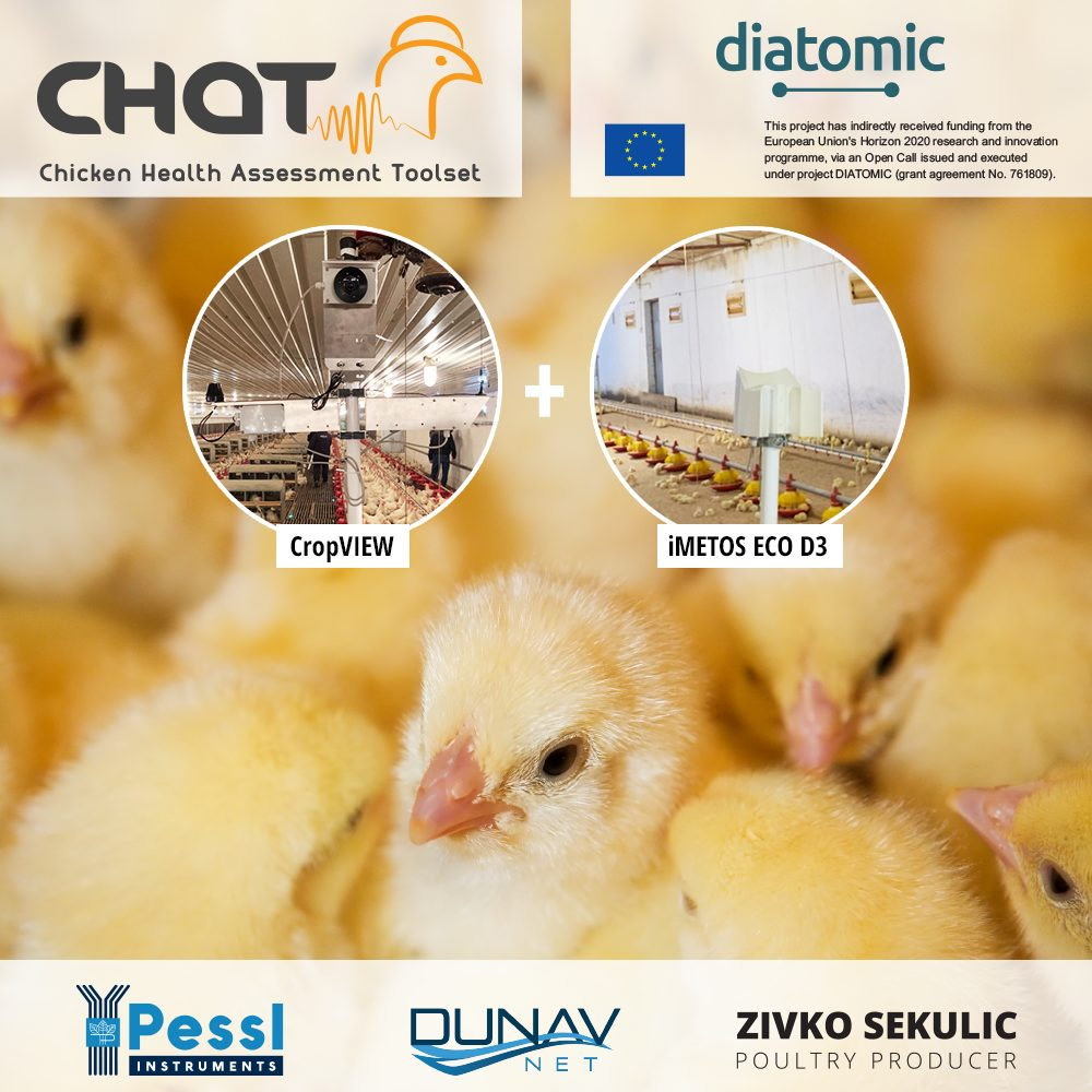 Chickens - CHAT project - iMETOS ECO D3, CropVIEW